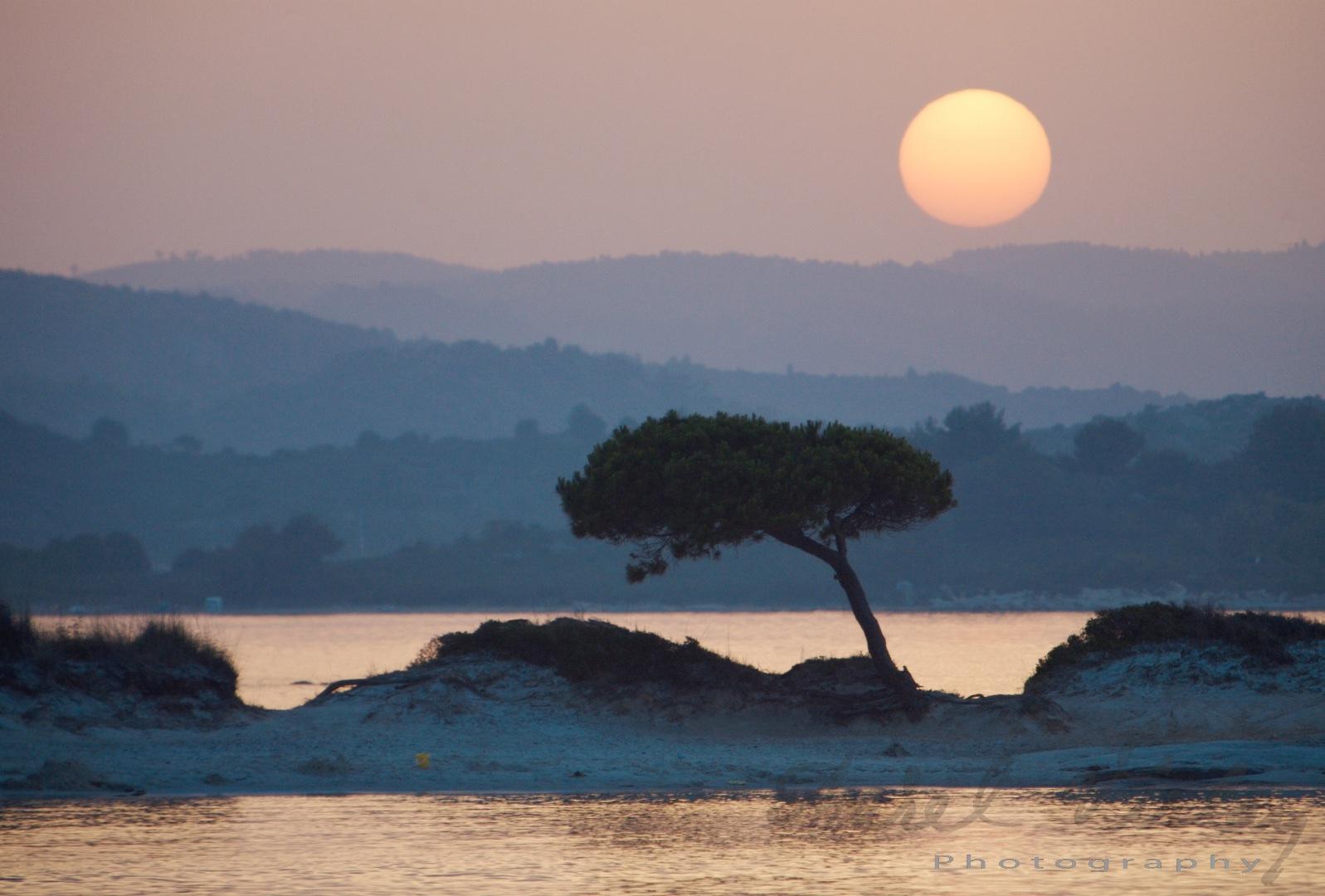 Sunset over tree in Greece. Landscape photograph by Aurel Virlan