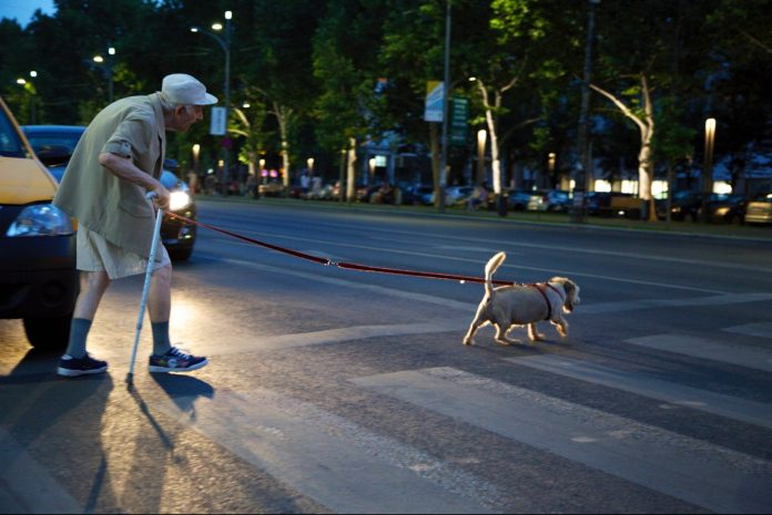 Old man crossing a street guided by his watching dog - Night shift photography.