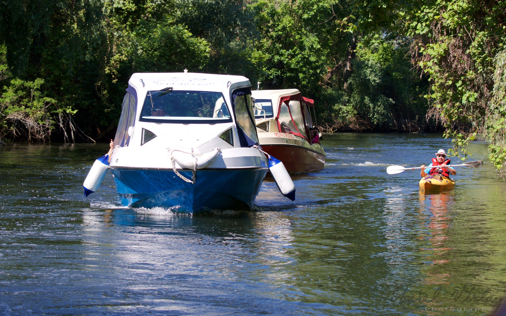 Two different kind of Danube Delta guided tours, kind of *motorways versus discovery*.